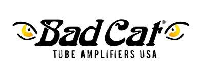 Bad cat Guitar Amplifiers