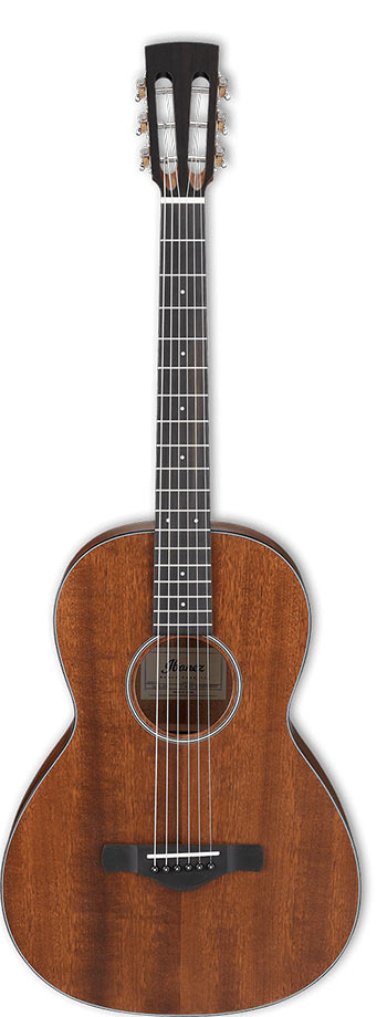 Ibanez Artwood AVN9 Vintage Thermo Aged